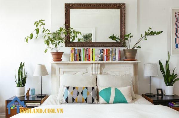 Băn khoăn về việc nên hay không nên đặt cây trồng trong phòng ngủ