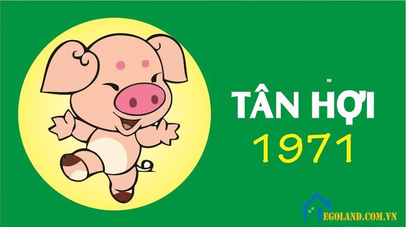Tuổi Tân Hợi sinh năm 1971