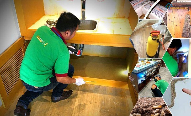 Công ty diệt mối Hanoi Pest Control có trình độ chuyên môn, kinh nghiệm cao