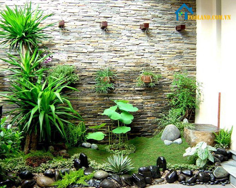 Sân vườn đẹp tự làm với cây cảnh bonsai và thác nước