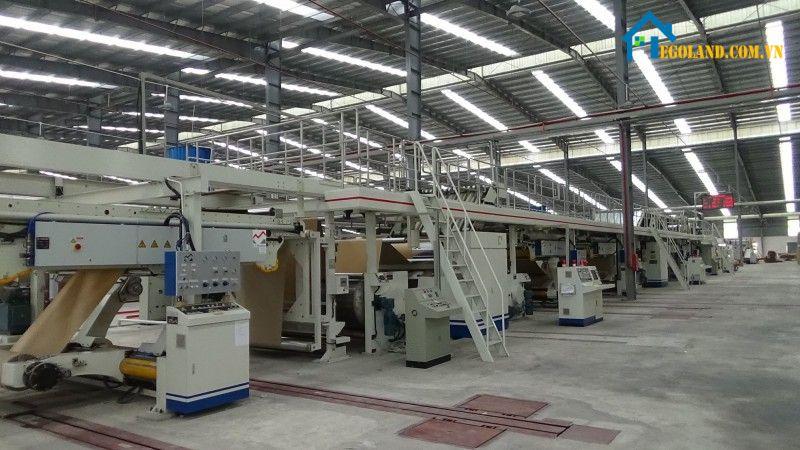 Sivico- Công ty in ấn bao tải nông nghiệp, bao xi măng