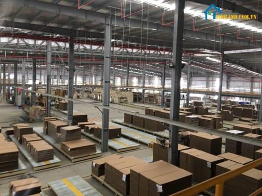 Tân Phú Hưng- Công ty sản xuất bao bì cao cấp