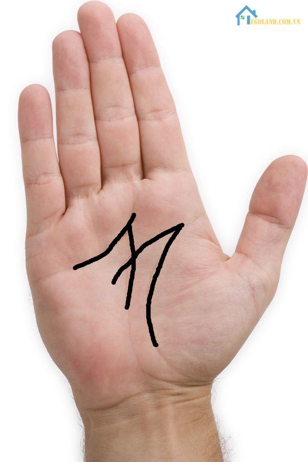 Bàn tay chữ M tay phải ở Nữ giới