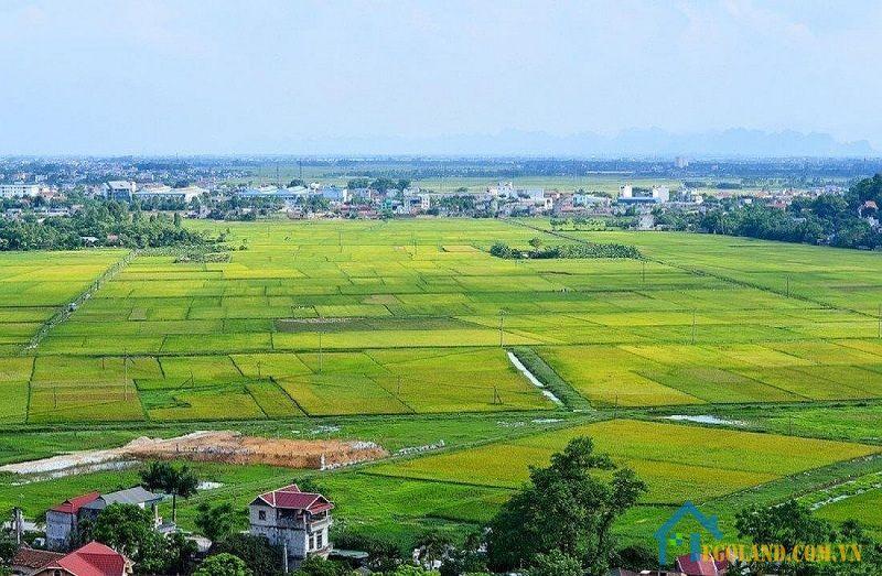 Đất LUC muốn chuyển đổi mục đích sử dụng đất cần năm trong diện quy hoạch đất ở