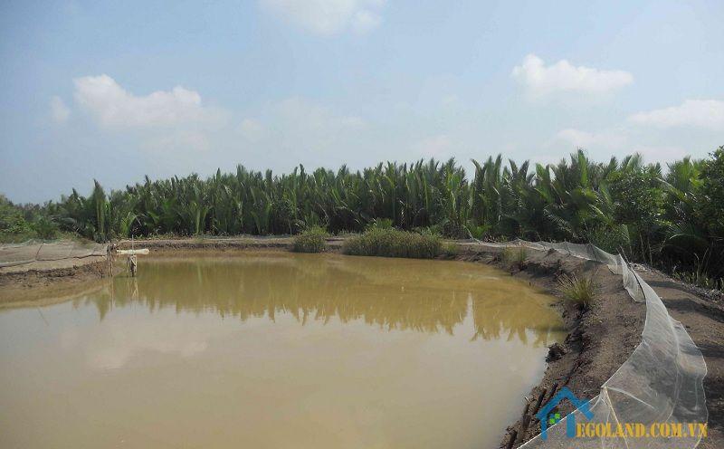 Đất NST được cấp giấy chứng nhận khi thực hiện chuyển đổi mục đích sử dụng đất