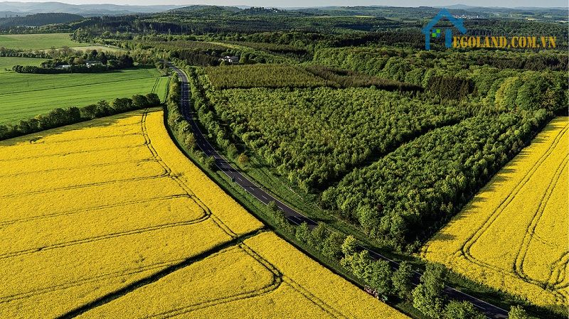 Đất canh tác là gì là câu hỏi của rất nhiều người