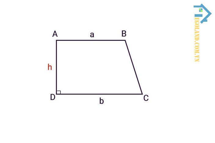 Đối với hình thang có một góc bằng 90 độ thì độ dài của cạnh bên có góc vuông sẽ chính là độ dài của chiều cao
