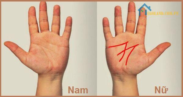 bàn tay chữ M ở Nam và Nữ