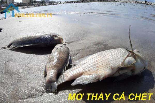 Nằm mơ thấy cá chết điềm báo gì?