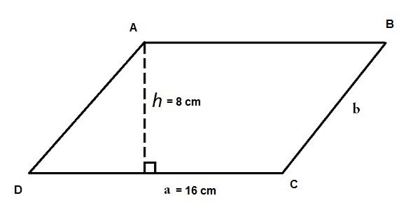 Ví dụ tính diện tích hình bình hành