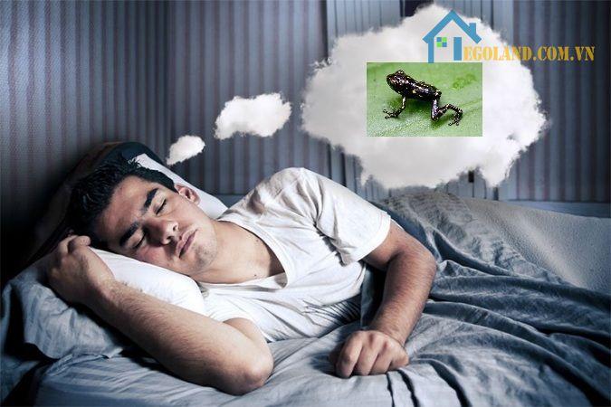 Mơ thấy ếch thường sẽ đem đến điều không may mắn